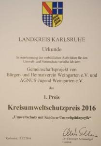 AGNUS-Jugend Kreisumweltschutzpreis